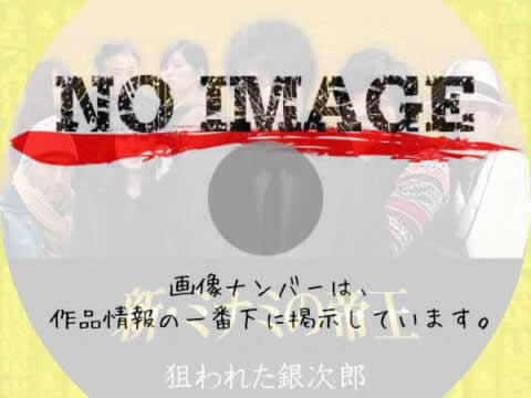 新・ミナミの帝王 狙われた銀次郎 (2013)