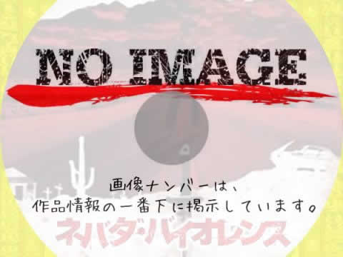 ネバダ・バイオレンス (2009)