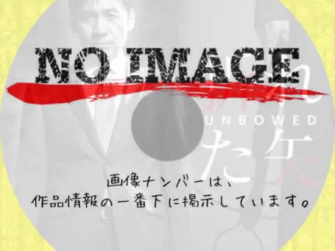 折れた矢 (2011)