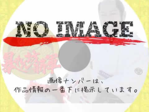 暴れん坊将軍 (汎用3)
