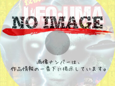 投稿! UFO・UMA アース・ディザスター編10本 (2021)
