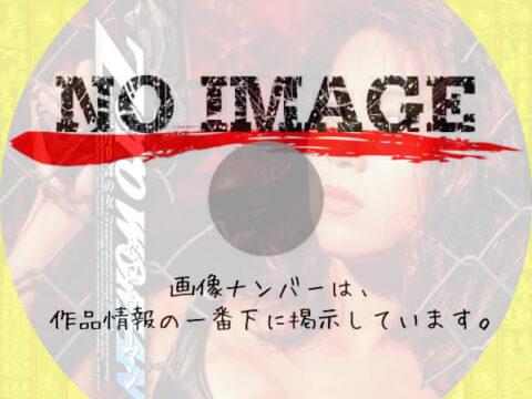 Zero WOMAN 警視庁0課の女 (1995)