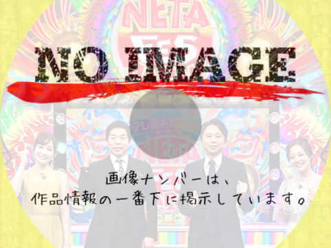 NETA FESTIVAL JAPAN (2021)