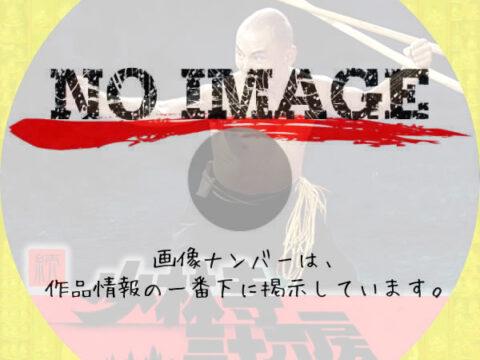 続・少林寺三十六房 (1980)