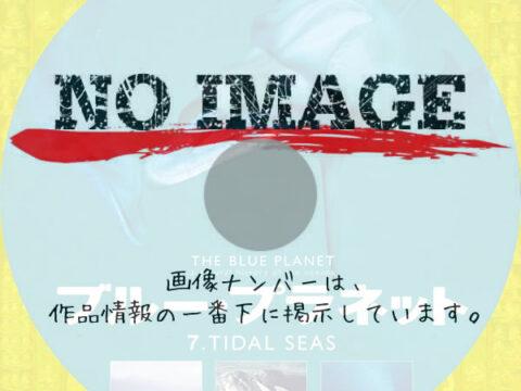 ブルー・プラネット7 TIDAL SEAS (2006)