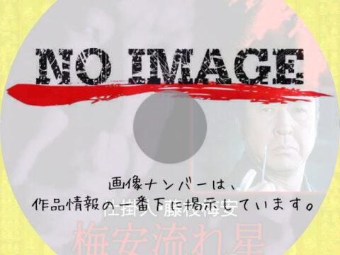 仕掛人・藤枝梅安 梅安流れ星 (1982)