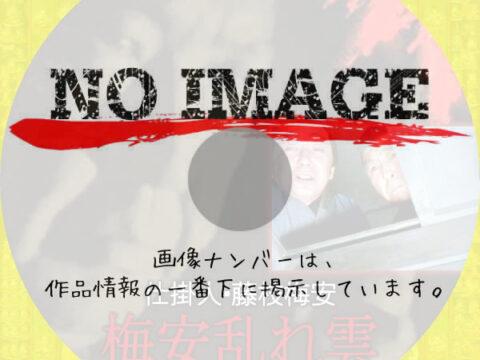 仕掛人・藤枝梅安 梅安乱れ雲 (1983)