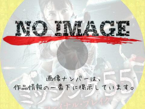 ミッシング55 ファイナル・ブレイク (2011)