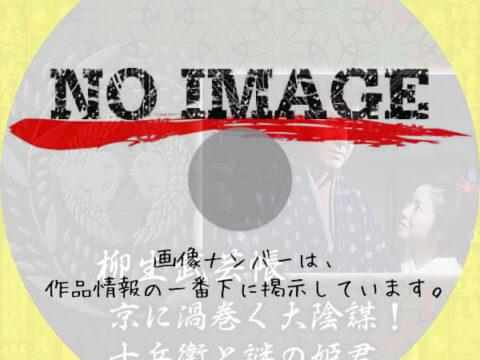 柳生武芸帳 京に渦巻く大陰謀!十兵衛と謎の姫君 (1991)