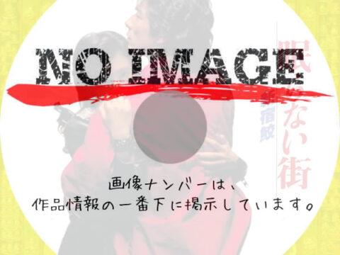 眠らない街 新宿鮫 (01)(1993)