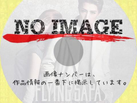 宝塚歌劇団 宙組公演 FLYING SAPA -フライング サパ- (2020)