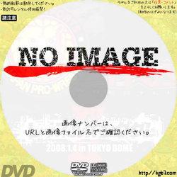 レッスルキングダムII in 東京ドーム  (2008)