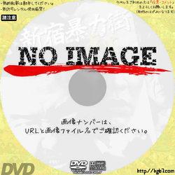 新宿暴力街 華火 (2007)